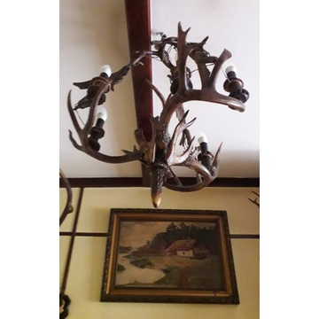 Żyrandol - rogi jelenia, trofeum myśliwskie