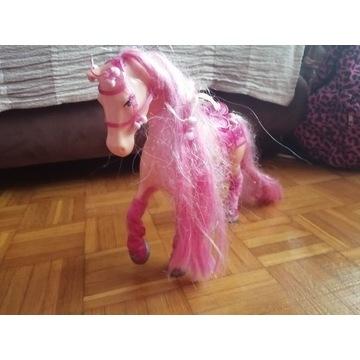 Konik Barbie