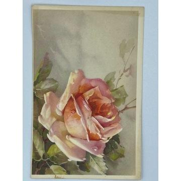 Pocztówka z różą w stylu Klein