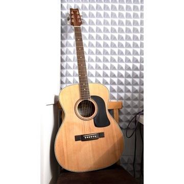 Washburn F10S Gitara akustyczna, stan idealny