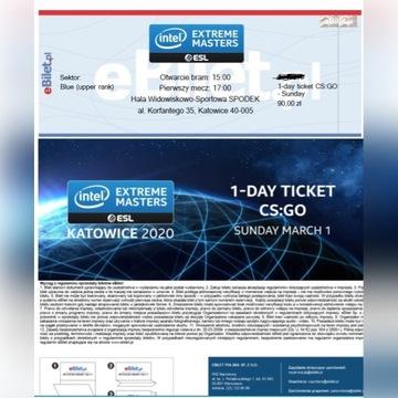 Bilet IEM 2020 Niedziela