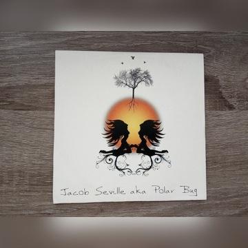 Jacob Seville Aka Polar Bug - Untitled