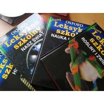 Leksykon szkolny . 4 rodzaje. Książka dla dzieci
