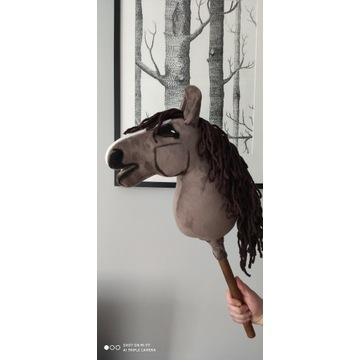 Konik Hobby Horse