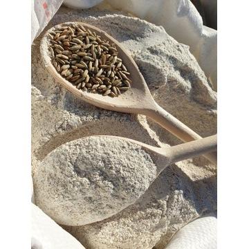 Mąka żytnia TYP 1400 10kg SITKOWA prosto z MŁYNA