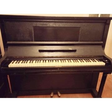 Pianino stuletnie Arnold Fibiger