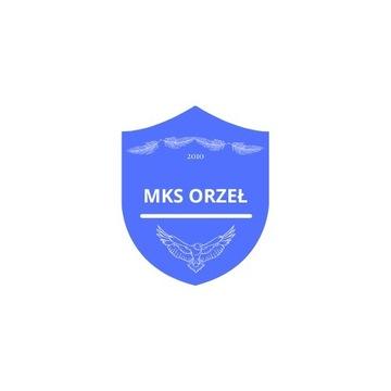 Projekt logo herb piłkarski