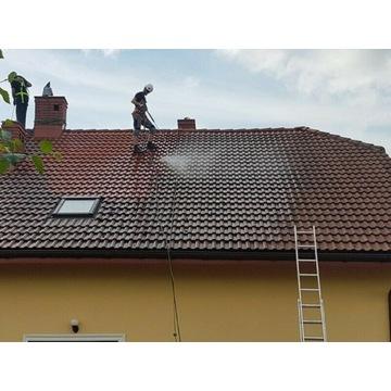 Mycie Malowanie Elewacji Dachów Remont Elewacji