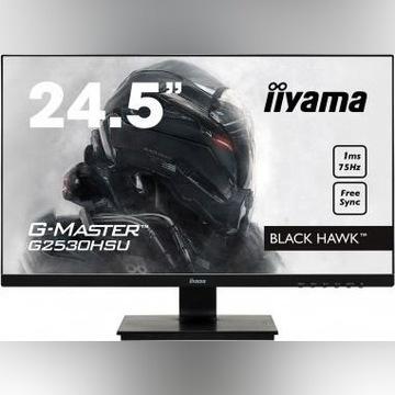 Monitor iiyama G-Master G2530HSU-B1 Black Hawk