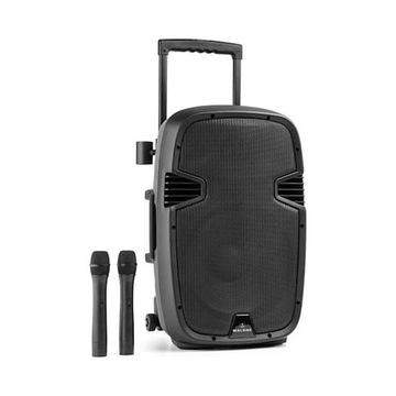 Bushfunk 30 aktywny głośnik PA 700W Bluetooth bate