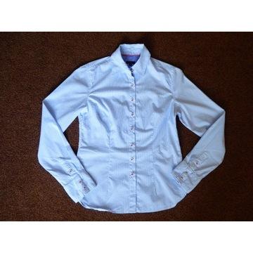 koszula długi rękaw drobne błekitno-białe paseczki
