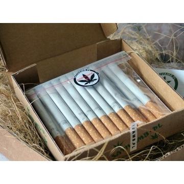 Susz CBD  pakowany w gilzy 20 sztuk