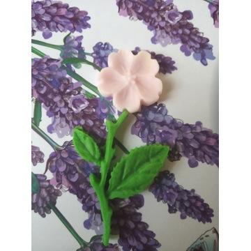 Zestaw kwiatuszek/listki/gałązka