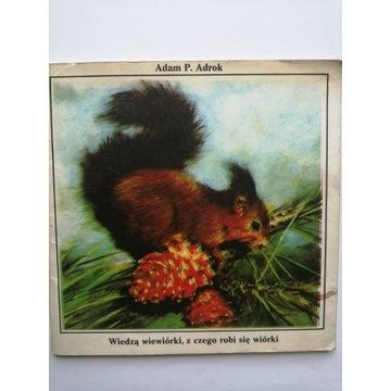 Adrok: Wiedzą wiewiórki, z czego robi się wiórki