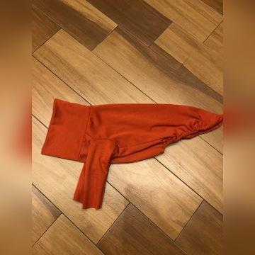 Bluza whippet 52 cm kurtka