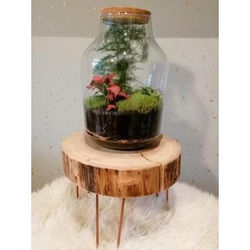 Las w słoiku wraz z drewnianym stolikiem