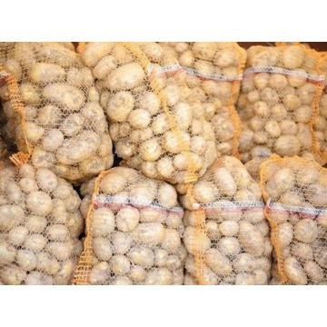 Sprzedam ziemniaki jadalne - odmiana IRGA