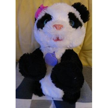 Panda interaktywna Pom Pom Fur Real Hasbro