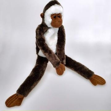 Małpka gibon, maskotka