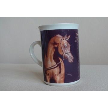 Kubek - ogier EQUATOR, koń, konie arabskie