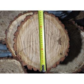 Plaster Dębowy 25cm / 10 cm