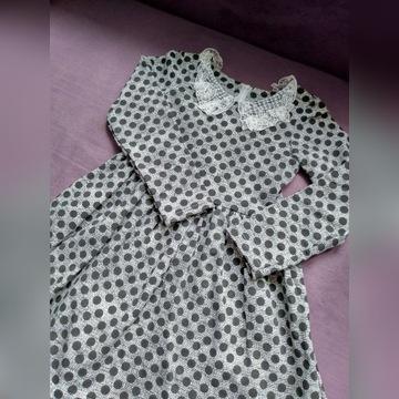 Sukienka w kropki 116 Nowa