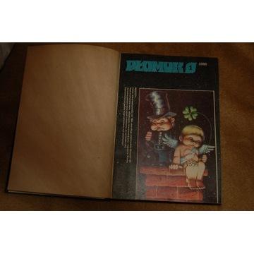 rocznik oprawiony PŁOMYK 1982