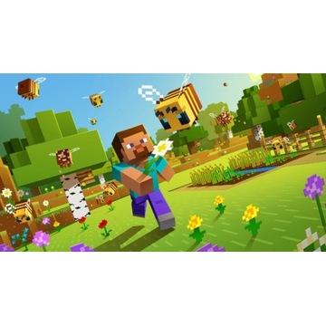 Minecraft  java edition, zmiana EMAIL, bez banów.