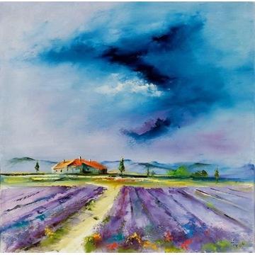 Alfred Anioł - Provence