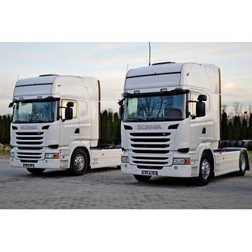 SCANIA R 450 OHNE EGR | duminski-trucks.com