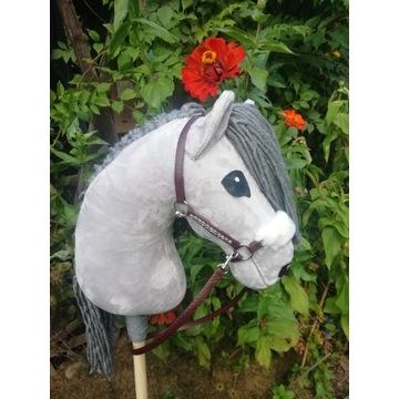 Hobby horse.
