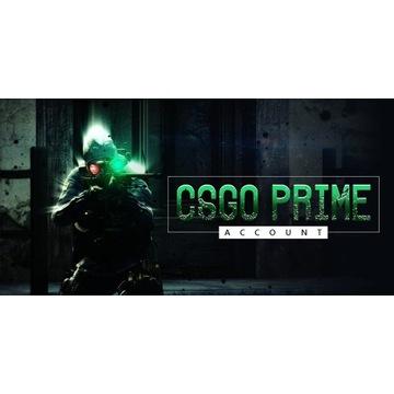 CSGO,METRO,RUST,PAYDAY1/2,DUŻO GIER!!!Konto Steam!