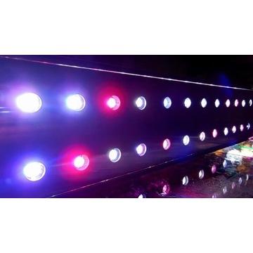 Oświetlenie do akwarium - belki power LED