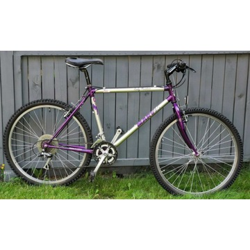 Rower MTB Marvil, srebrny, Altus A10, Cr-Mo