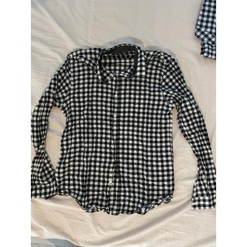 2 koszula Zara + koszulki H&M