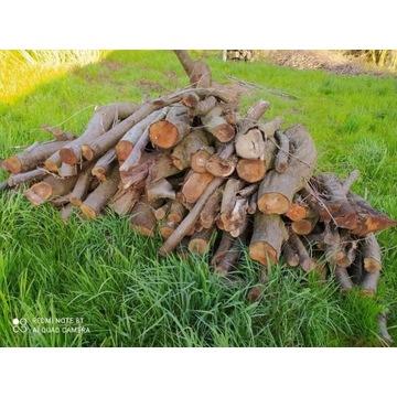 Drewno na opał śliwa