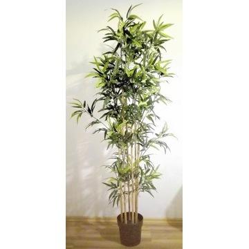 Sztuczna roślina Bambus wysokość 170 cm!