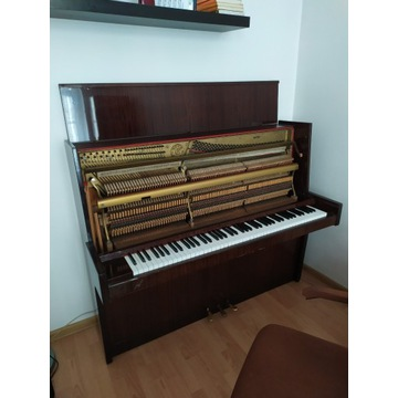 Pianino Calisia M-120