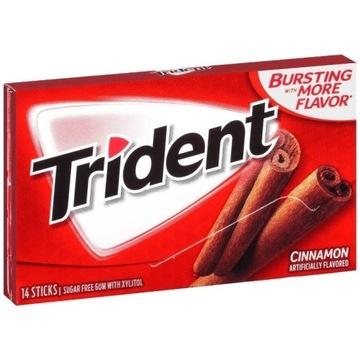 Guma Trident Cinnamon 14 szt. USA