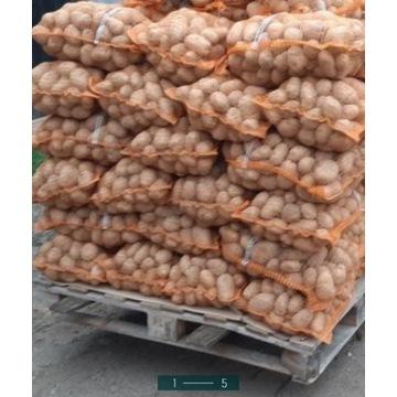 Ziemniaki Melody Lord Denar