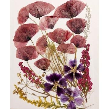 Suszone kwiaty do żywicy i pod witraże,  mix5
