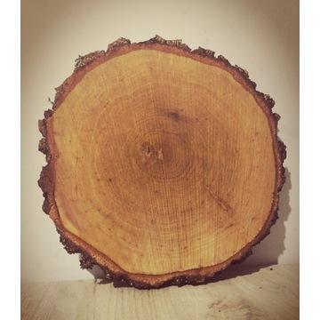 Plaster drewna, plastry drewna, krążki drewniane