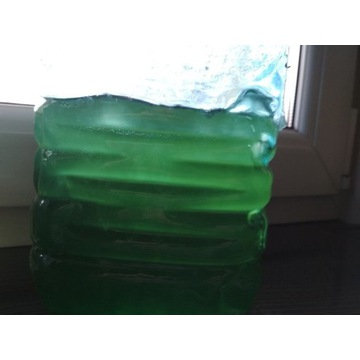 Fitoplankton 1l