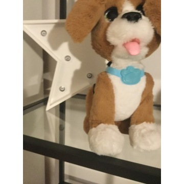 Fur Real interaktywny pies piesek