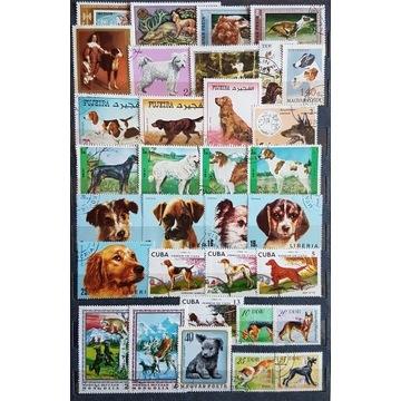Zestaw znaczków kasowanych [ ], psy, świat.