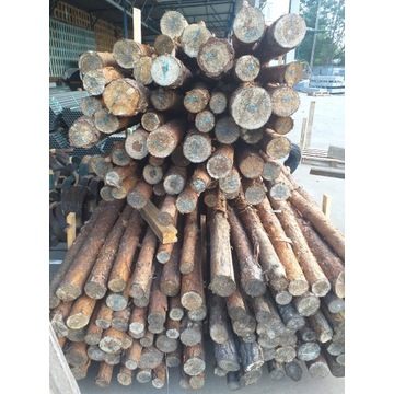 Stemple budowlane, słupki drewniane 3M, solidne
