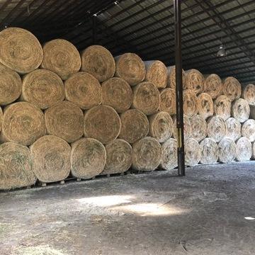 Siano dla koni i bydła - 2020. Baloty/bele siana
