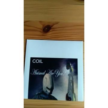 Coil Absinthe CD WYDANIE LIMITOWANE  NOWE