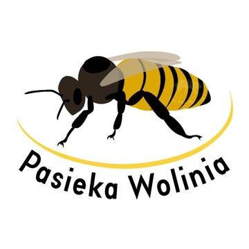 Matki pszczele Buckfast KB dostępne od 21.06