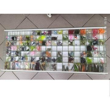Ekspozytor do sklepu wędkarskiego 114x43 szklany